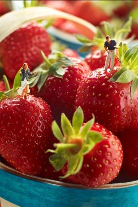 Ramene pas ta fraise